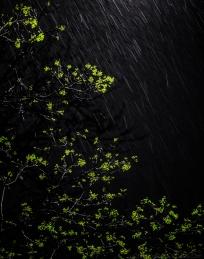 rain2470-4
